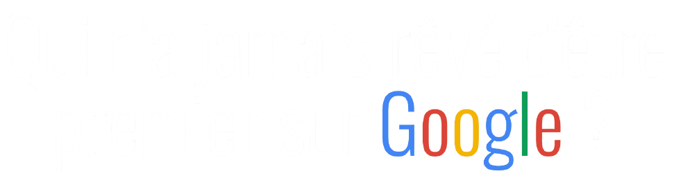 Consultant SEO Paris Romuald